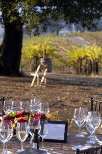 Dinner-in-the-Vineyard.Jody-Holman-Webster