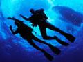 UnderwaterAdventures.2.10.08.jpg