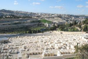 Mount of Olives.jpg photo by Tonya Fitzpatrick