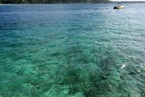 Pristine Caribbean Waters.jpg