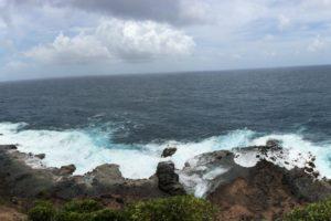 Compass-Dominica Coast.jpg Photo Tonya Fitzpatrick