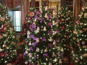 White House Christmas. Photo: Tonya Fitzpatrick