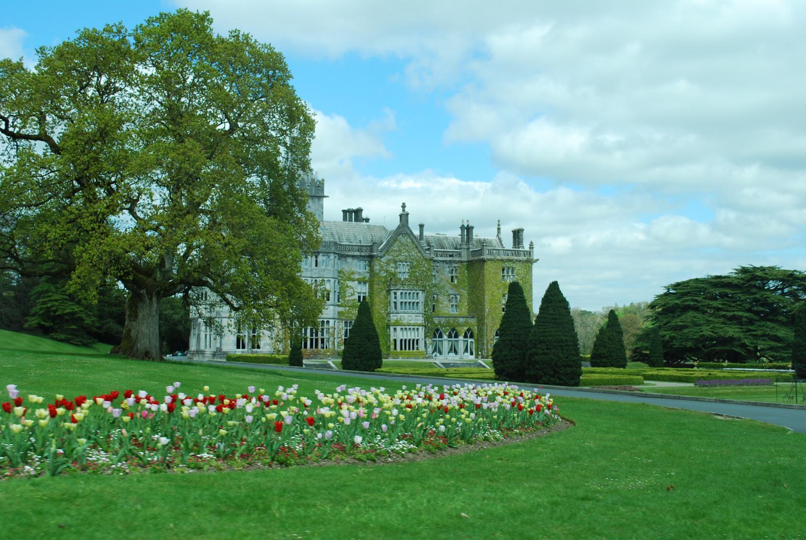 Adare Manor. Photo: Tonya Fitzpatrick ?