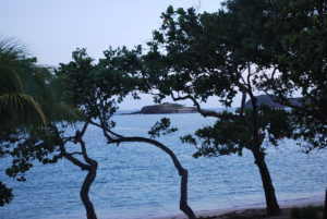 View from our room at Hotel Bequia. Photo: Tonya Fitzpatrick