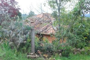 Colombia Village. Photo: Tonya Fitzpatrick