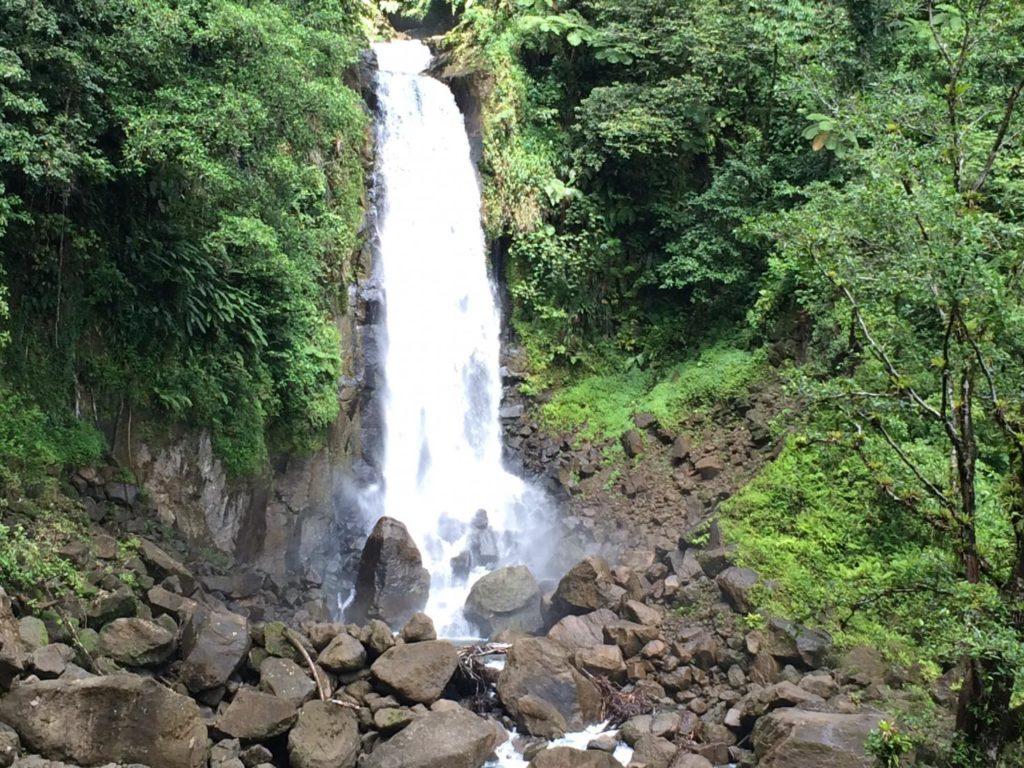 Global Citizenship-Trafalgar Falls on Dominica.jpg