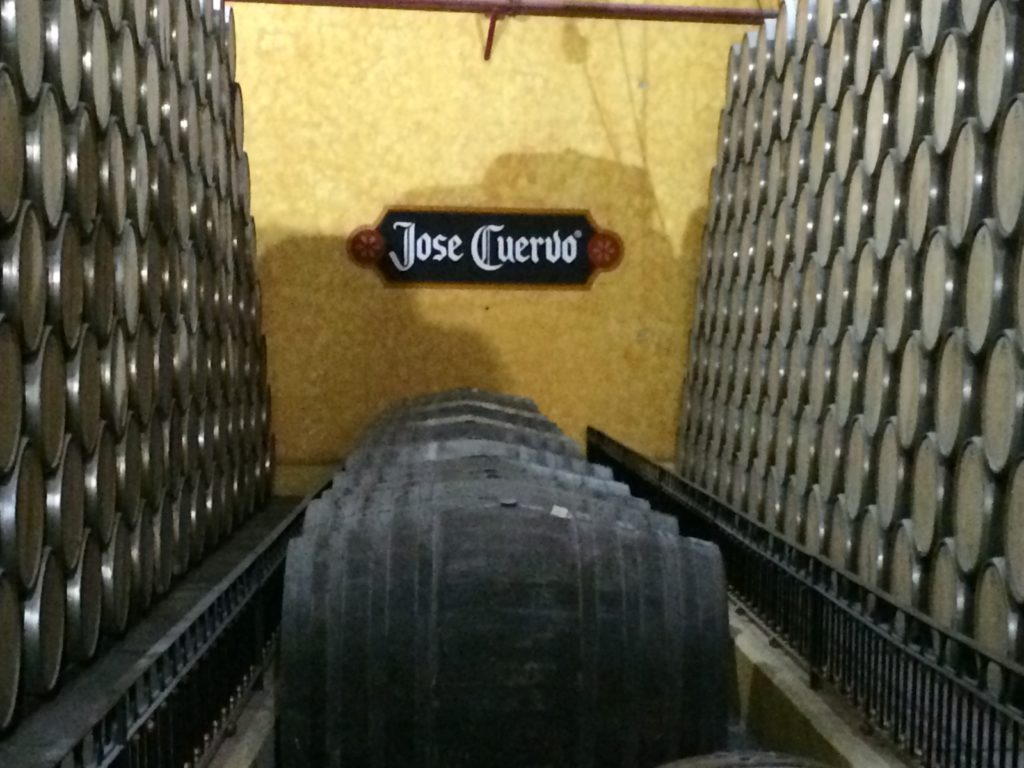 Inside Jose Cuervo.  Photo:  Tonya Fitzpatrick
