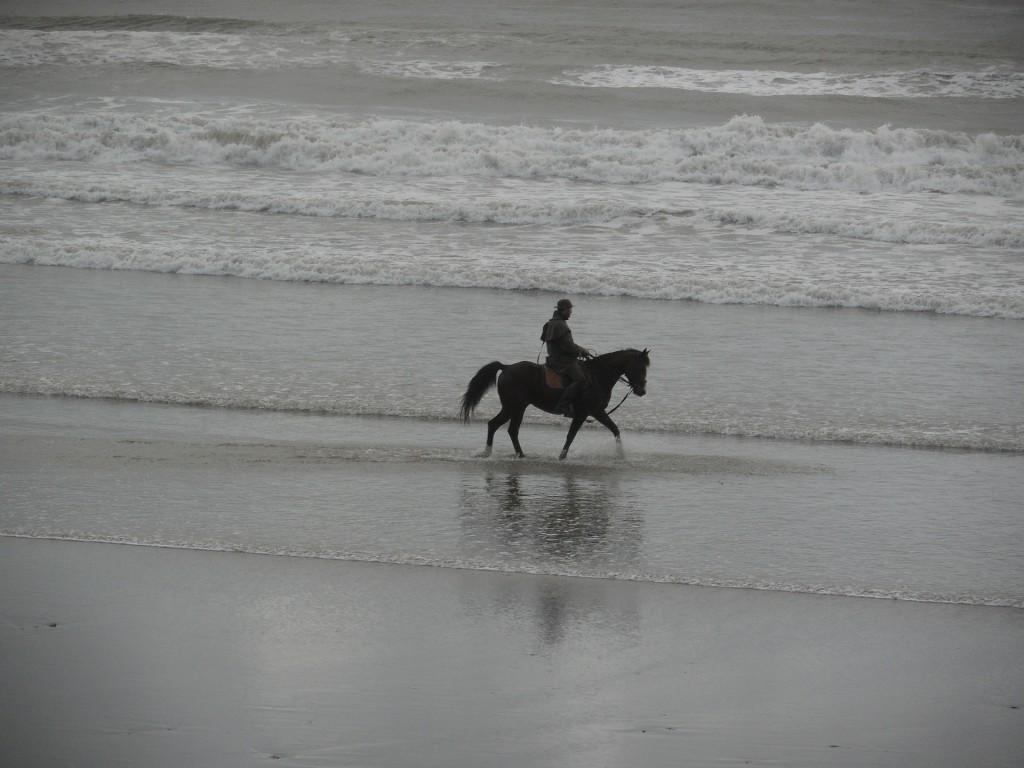 horseback-riding-beach.jpg