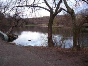 Van Cortlandt Park. By Jim.henderson (Own work) [Public domain], via Wikimedia Commons