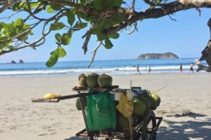 Costa Rica Coco cart photo by Eliza Amon