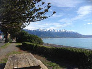 Kaikoura Peninsula, NZ. Photo by Ann-Marie Cahill