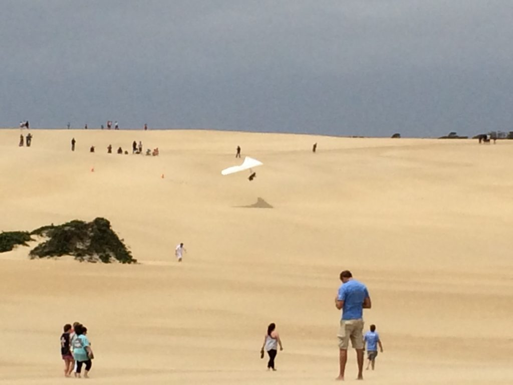 Sand Dunes at the Outer Banks. Photo: Tonya Fitzpatrick