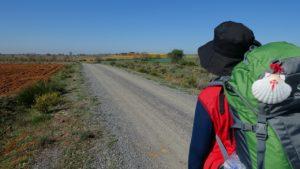 Along the Camino de Santiago.