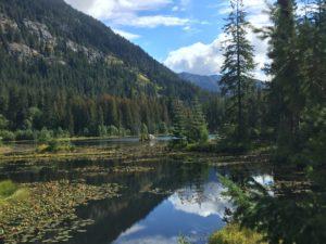 Howard Lake. Photo: Eliza Amon