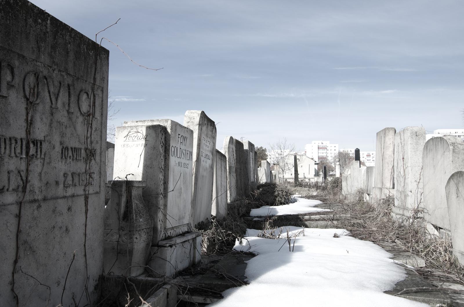 Inside the Filantropia Cemetery. Photo: Diana Condrea