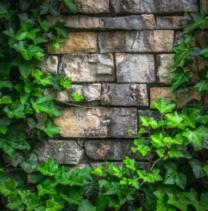 This stone wall is one of the figures that is explored in Spirit Stones.