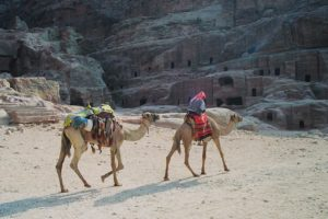 Bedouin on camel in Jordan near Dana Biosphere Reserve.