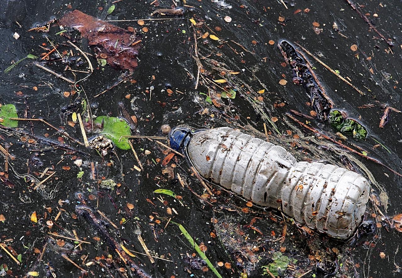 Plastic bottles litter our ocean waters