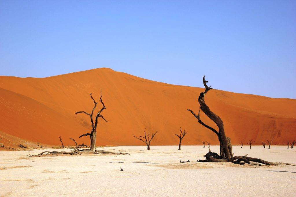 Namibian desert on the African continent.