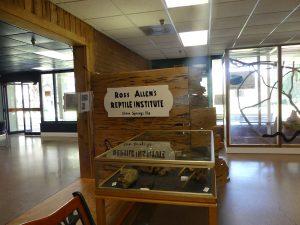 Ross Allen Exhibit at Silver Springs. Photo: Kathleen Walls