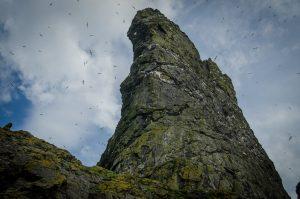 The rugged landscape of St. Kilda. Photo: Donna Green (cc)