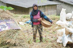 Woman farmer in Licin