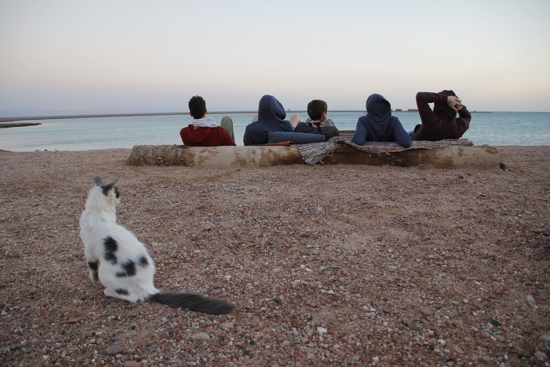 Digital Nomads relaxing on a beach