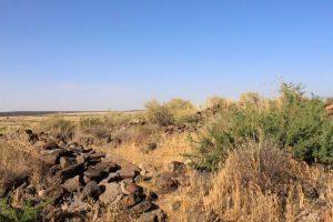 Discovery at Pile of rocks at Agua Fria National Monument. Photo: Breana Johnson