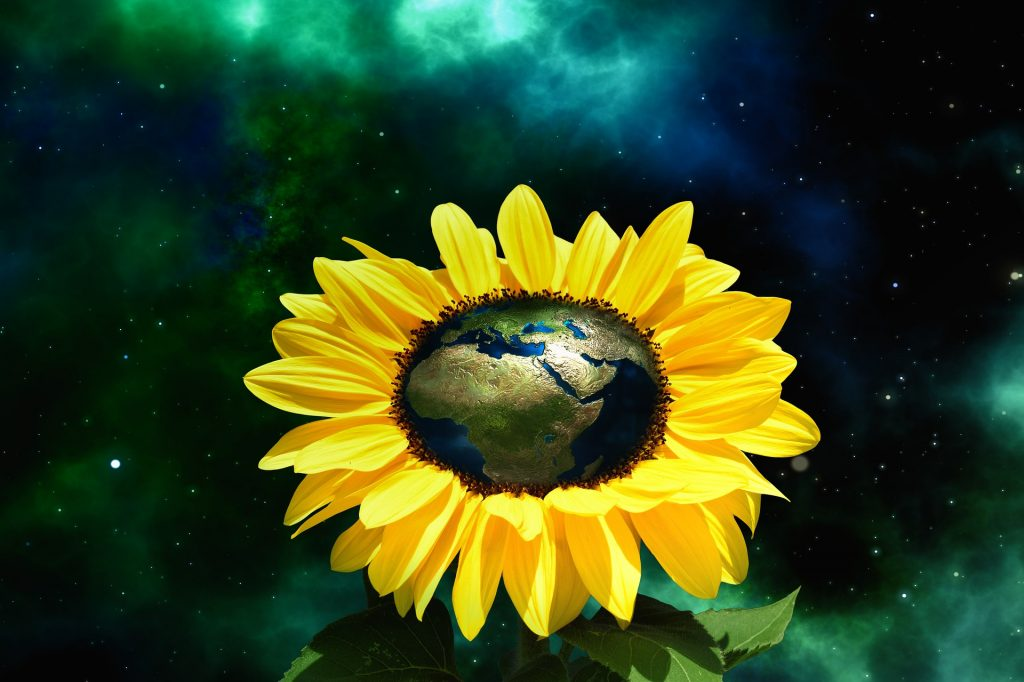 Earth embedded in a beautiful sunflower is a reminder about eco-friendly travel as an imperative.