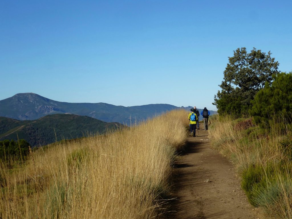 Going the way of St. James along the Camino