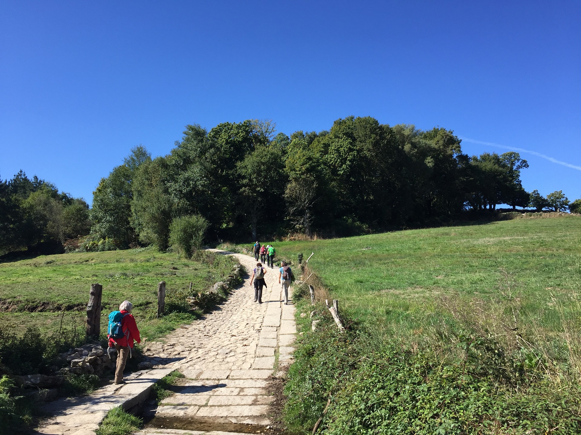 A popular path along the Camino.
