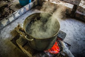 Ayahuasca brewing