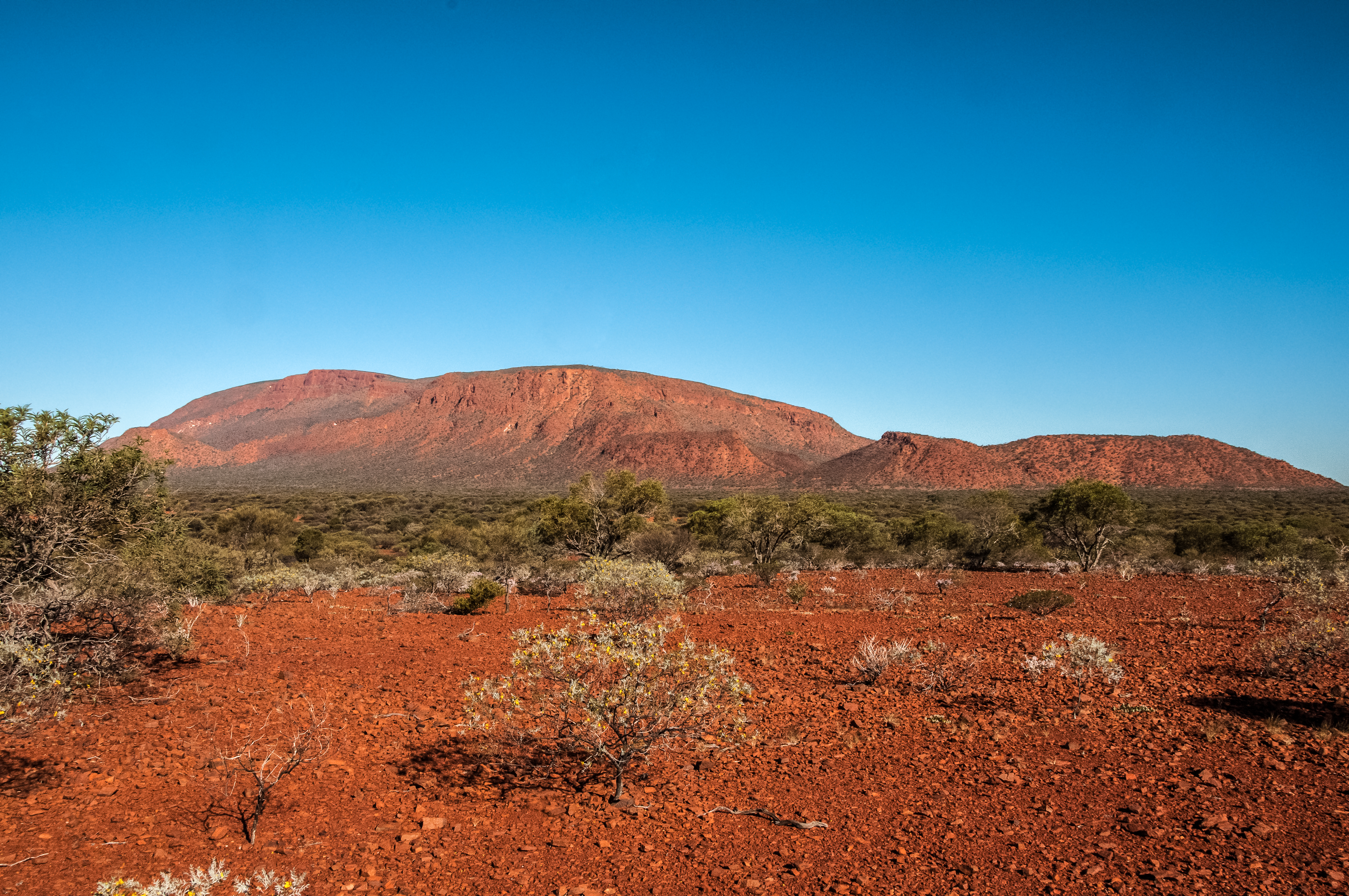 """""""Burringurrah"""" aka Mount Augustus photo by ThisIsForEveryone is licensed under CC BY 2.0"""