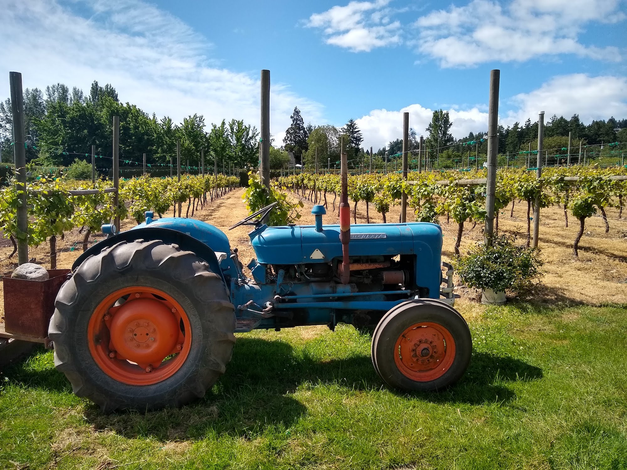 The Roost Vineyard Bistro & Farm Bakery on Vancouver Island.