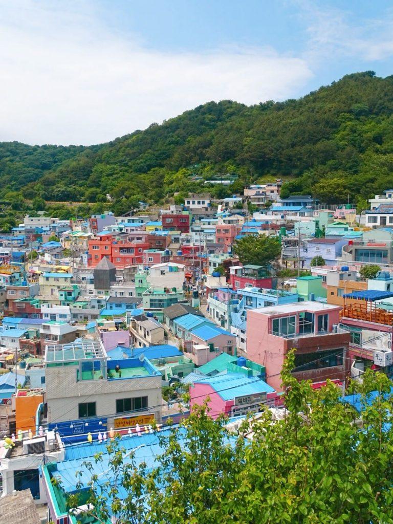 Birds eye view of Busan, South Korea. Photo: Rose Munday
