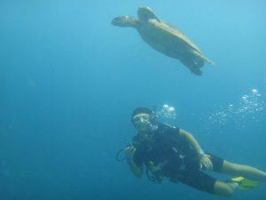 Author Carmen Ang Diving in Sipadan