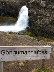 Gongumannafoss waterfall. Photo: Tonya Fitzpatrick