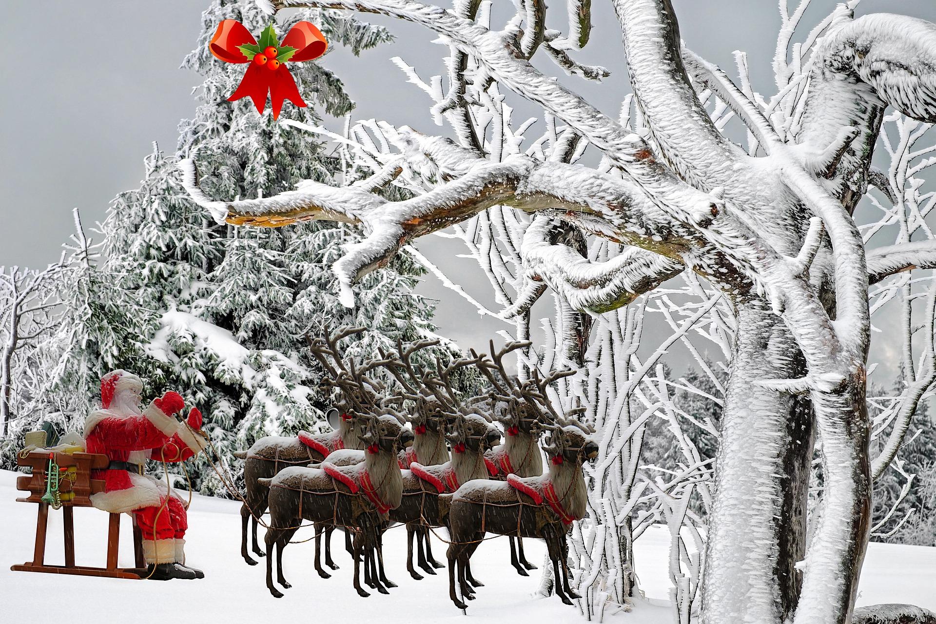 Santa with Reindeer preparing for Chrismas