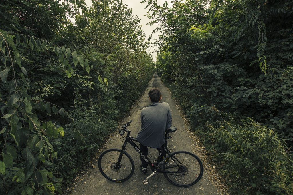 bicycler in forest