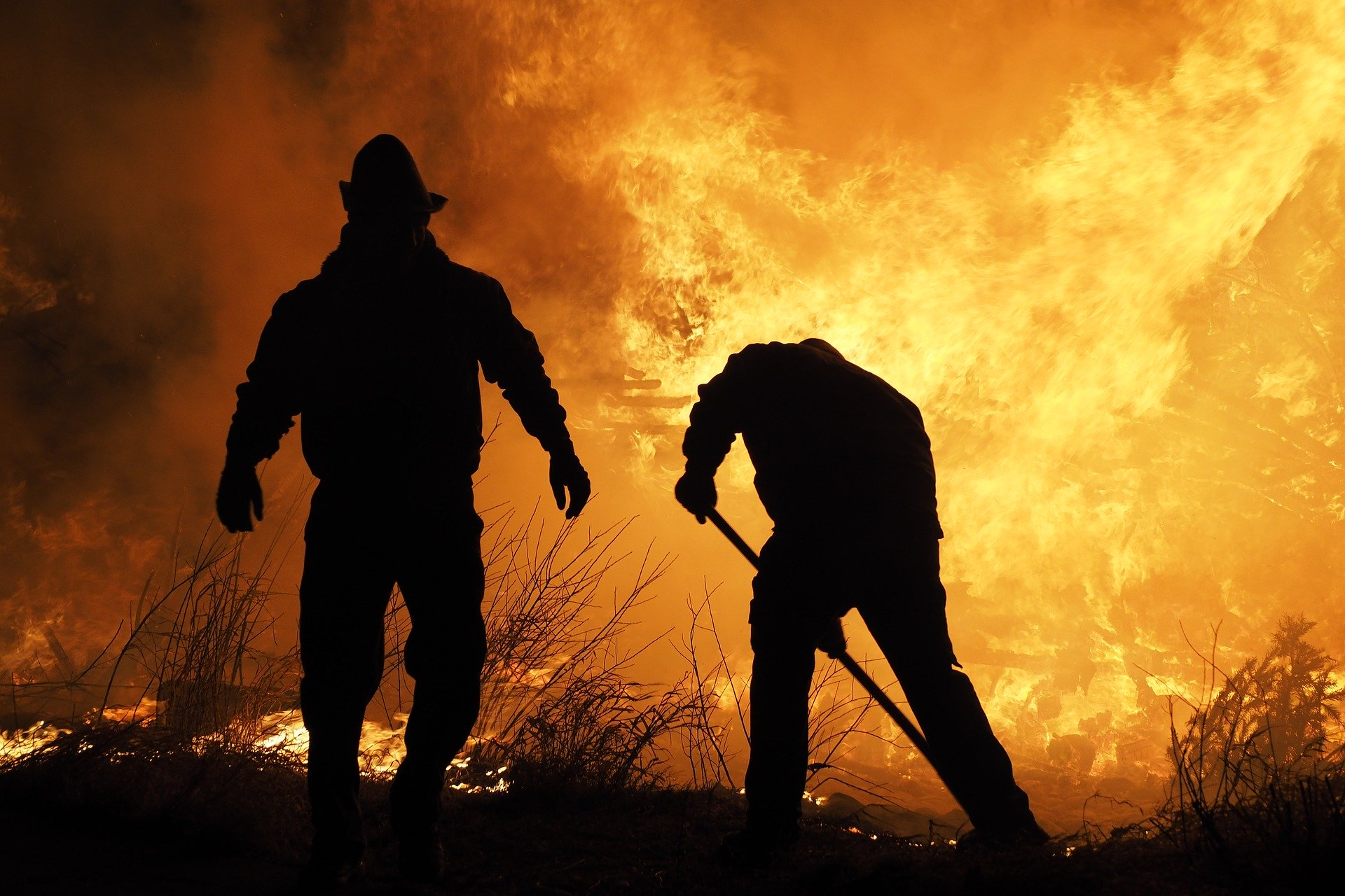 Fire fighters extinguishing wildfire