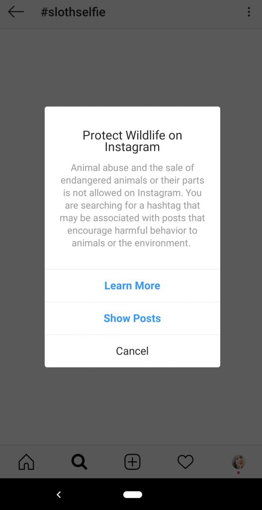 Animal tourism social media post
