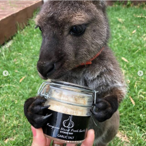 """Empty Esky Bushfire Recovery on Instagram """"EMPTY ESKYERS, HERE'S A STORY OF TRUE GRIT AND GARLIC ❤️😭[...]"""