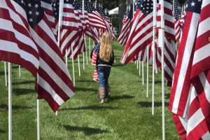 Walking Amongst Flags photo by Jen Tousey