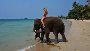 Riding elephant at sea in Thailand