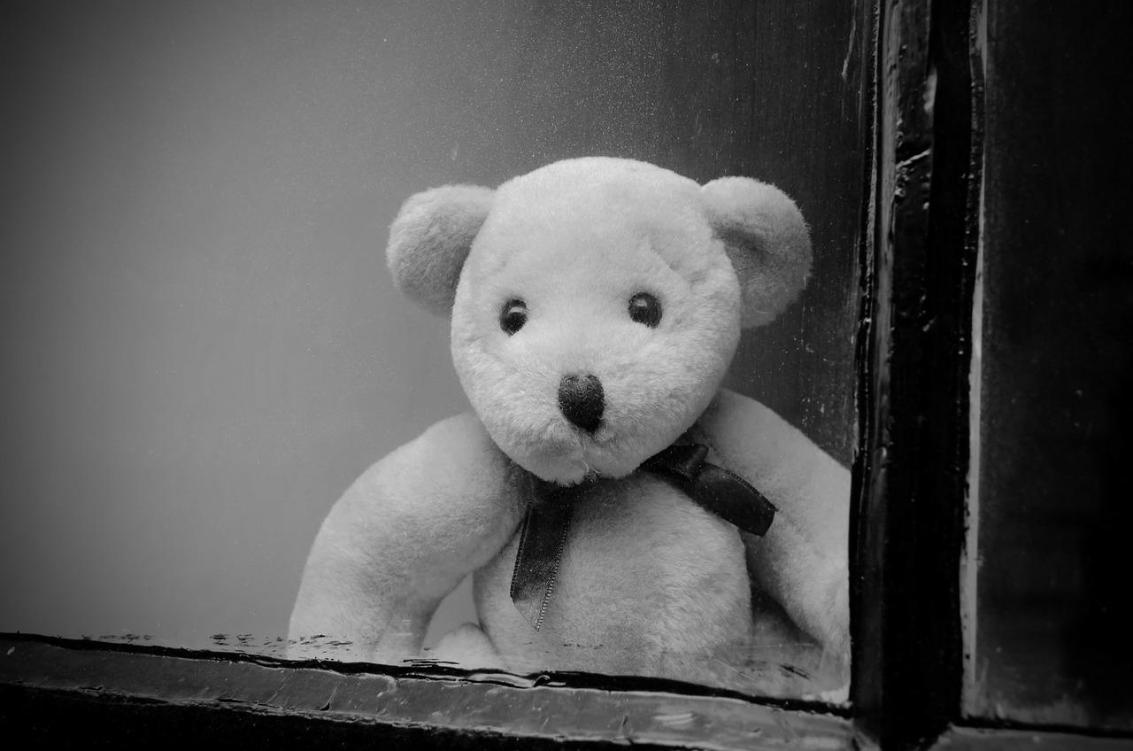 Teddy Bear in window