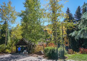 vail-hiking path