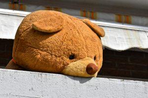 Giant Teddy Bear in windown