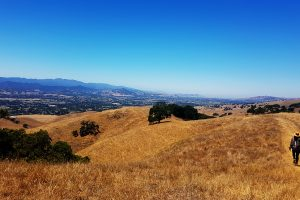 California Hike. Photo: Torrance McCartney