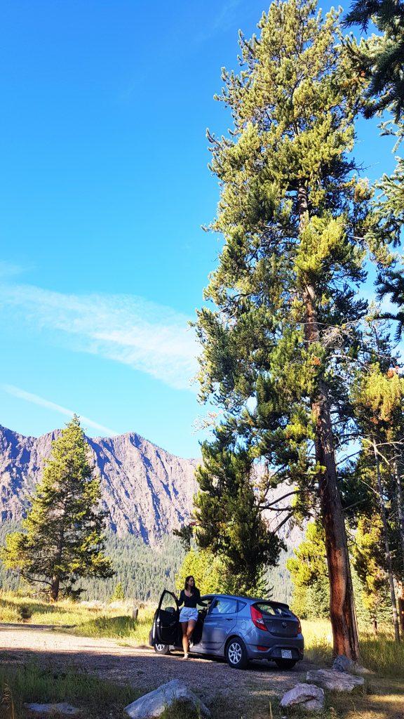 Road Trip - Shoshone National Park. Photo: Torrance McCartney