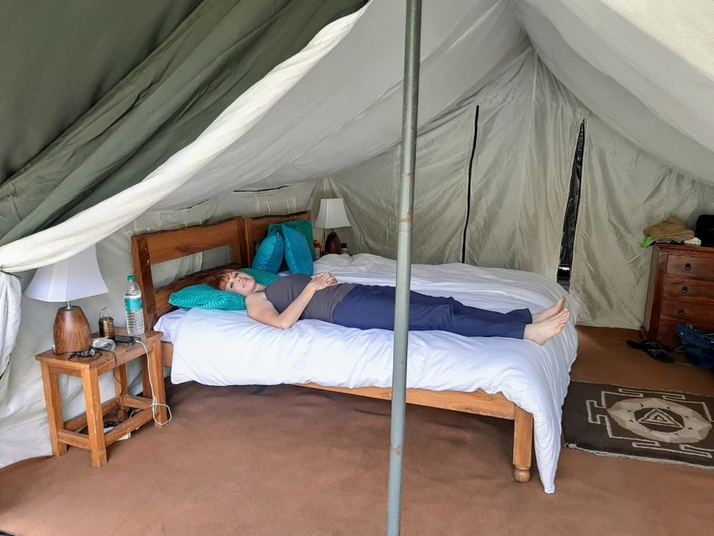"""""""This is pretty much everyday in my tent from about 11am-4pm with the 100 degree stagnant valley heat. It's simply too hot to move."""" — in Champawat. Photo: Anietra Hamper"""